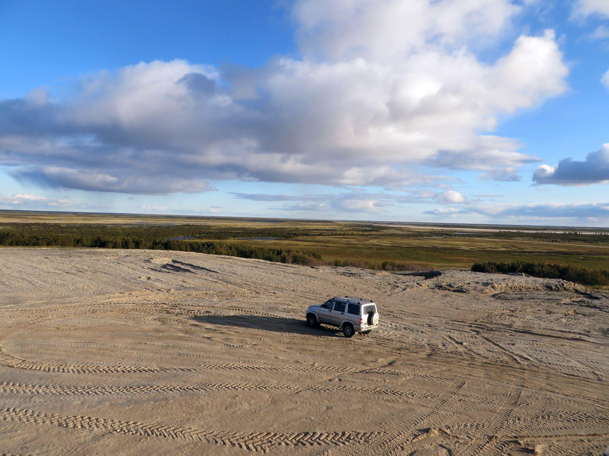 sandy aggradation in tundra (Taz peninsula)